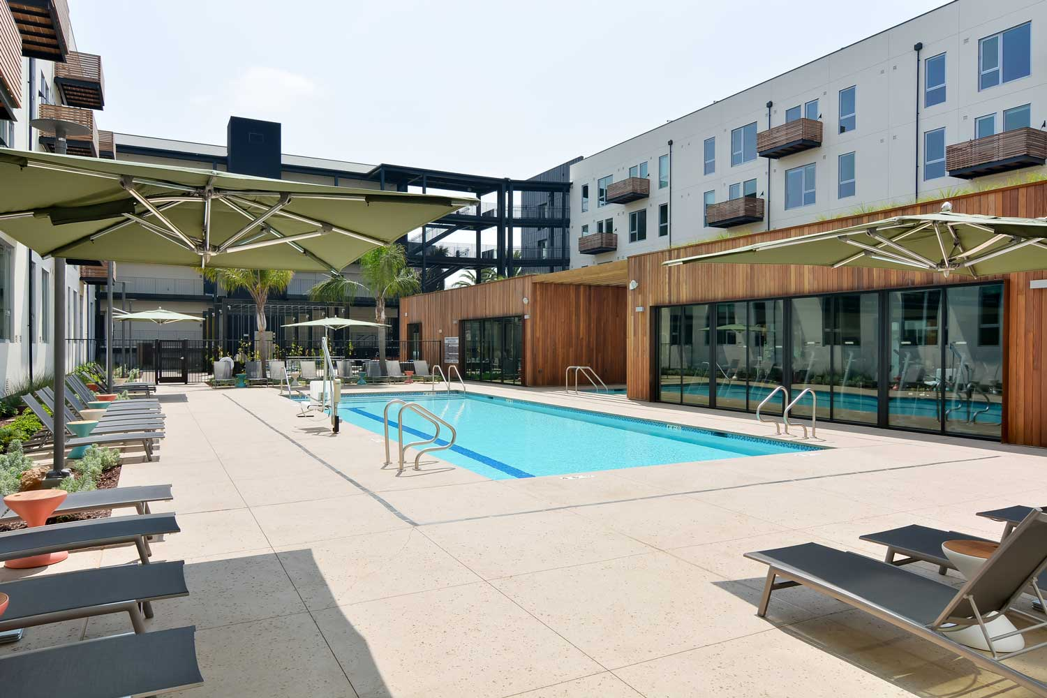 Pet-Friendly Apartments in Union City California - The Union Flats Swimming Pool
